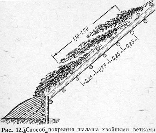 http://www.stjag.ru/articles/30168/4.jpg